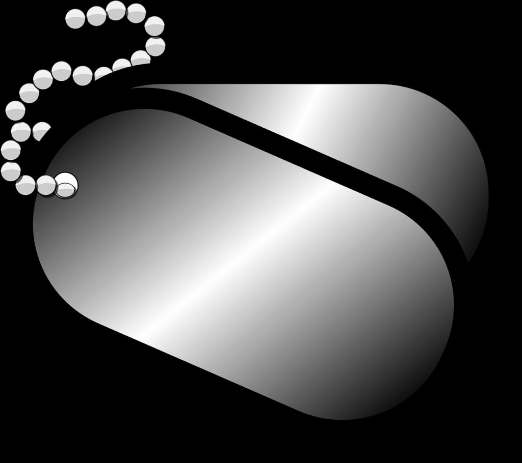 דיסקית